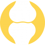 Icon: Gelenke